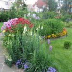 клумбы из многолетников в саду
