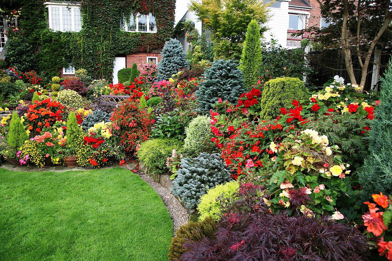 том, цветы для загородного дома названия и фото цены квартиры корее