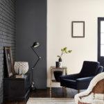 краска для стен в квартире фото идеи