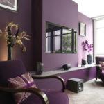 краска для стен в квартире варианты