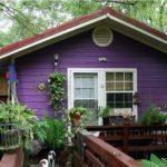 покраска деревянного дома фото варианты