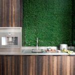 деревянная кухня с зеленым