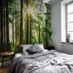 фотообои в спальню с солнечным лесом