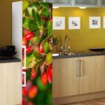природа на холодильнике