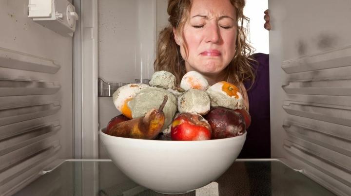 плесень на фруктах в холодильнике