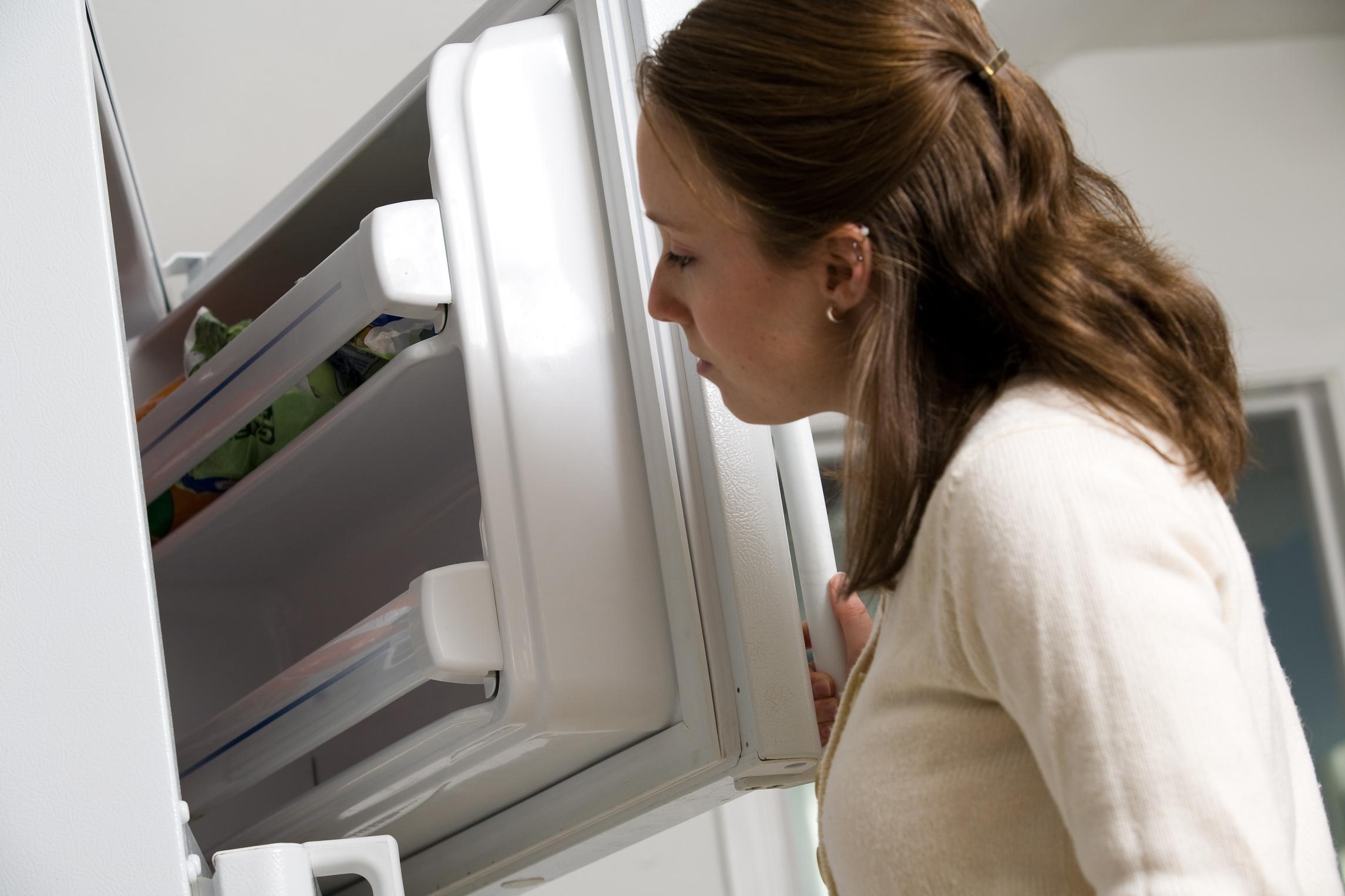 проверка холодильника во время разморозки