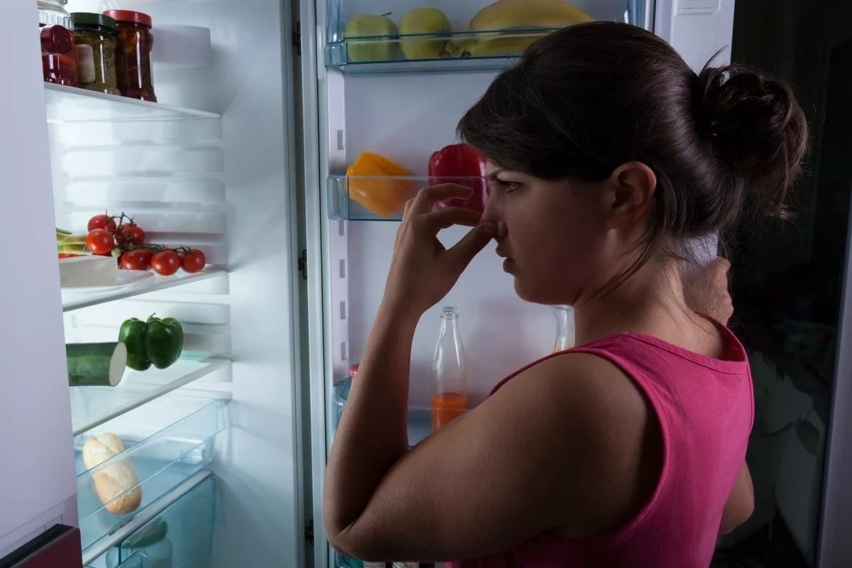 причины неприятного запаха в холодильнике