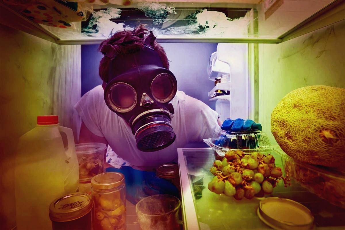 причины запаха в холодильнике