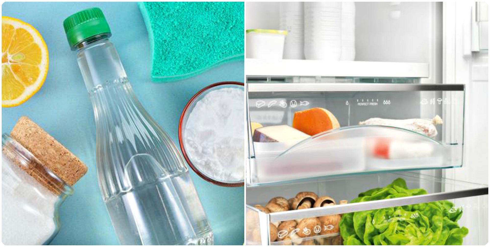 рекомендации по уходу за холодильником